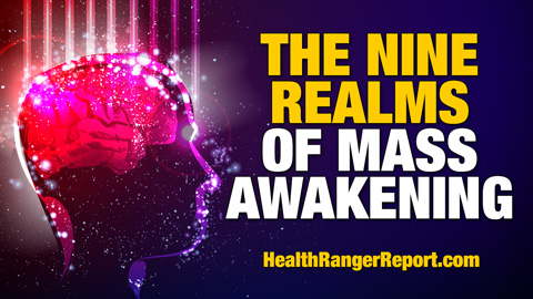 The-Nine-Realms-of-Mass-Awakening-480